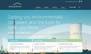 Anceron Website Homepage Screen Capture 1